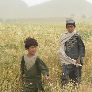 Afghanistan 2012-13