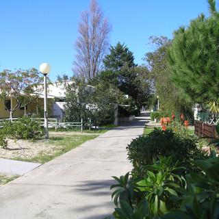 eilanden ria formosa: the village of Armona
