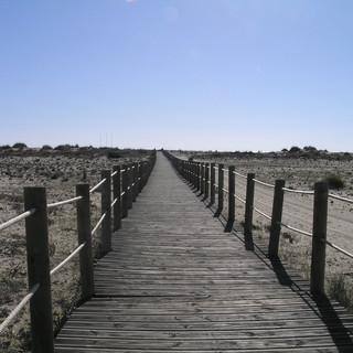 culatra, brug naar het strand