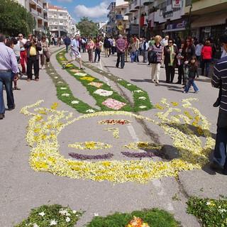 Bloemenfestival in Sao Bras
