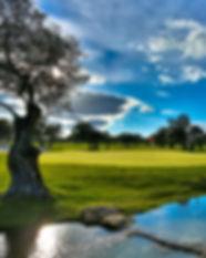 Quinta da Ria.jpg
