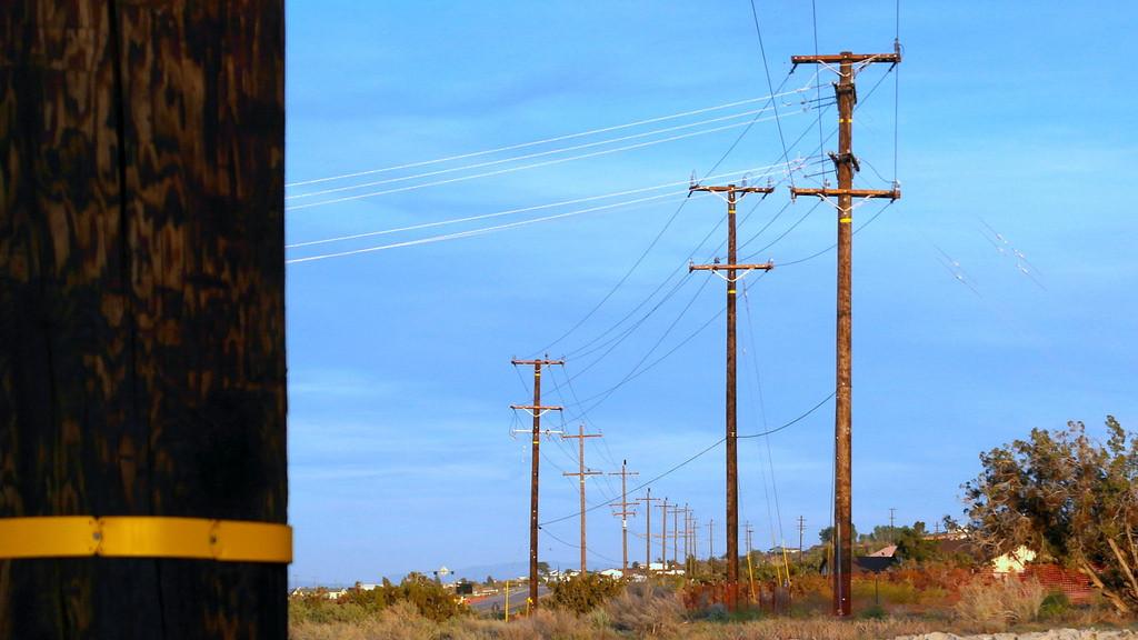 Utility Pole Audits