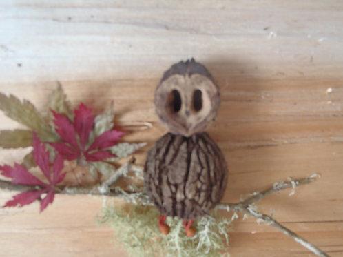 Black Walnut Owl Kit