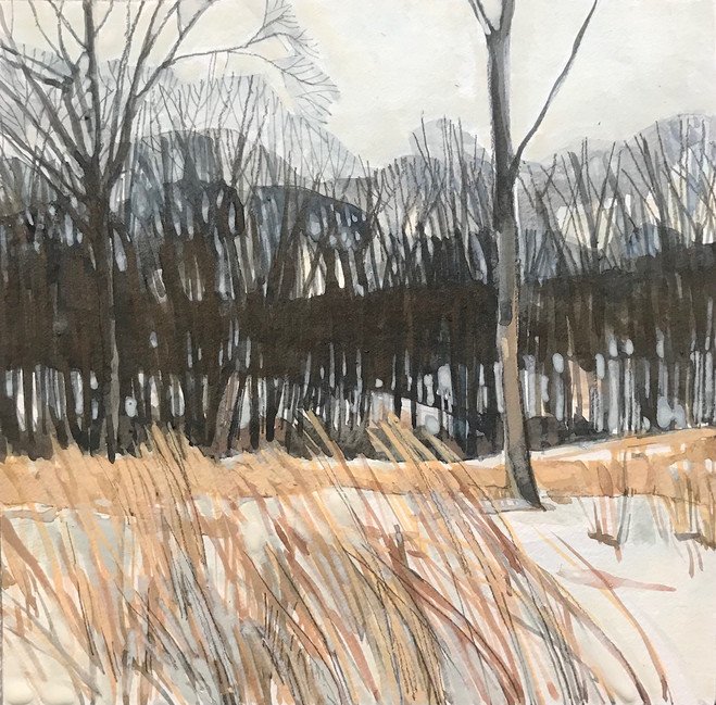 First Snow--Meadow