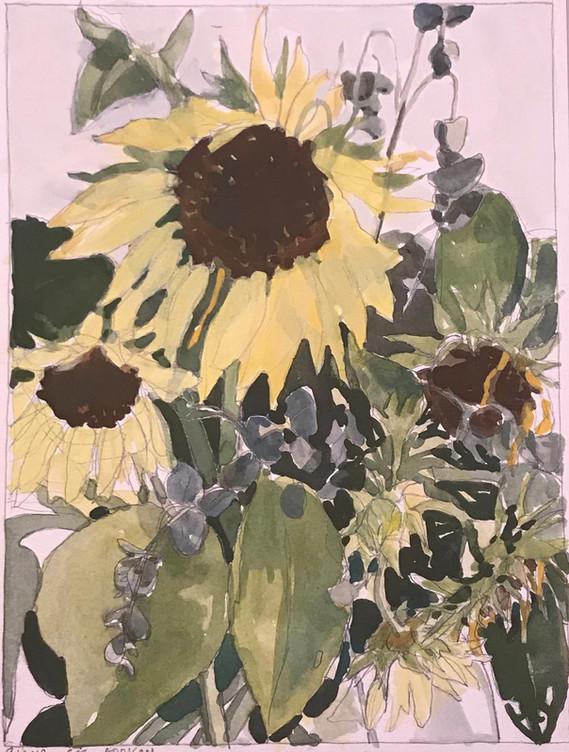 Sunflowers (43)