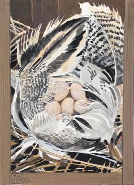 Tree Swallow Nest--Houston Meadow