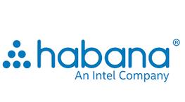 Habana Labs Intel Logo.png