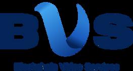 BVS Logo.png