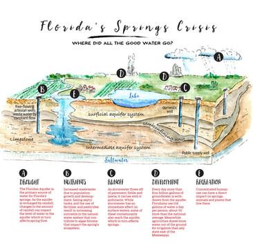 Florida's Springs in Crisis