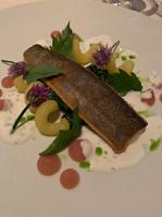 Scottish Salmon Dish at La Terasse