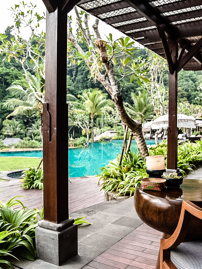 View from the Bar at the Mandapa