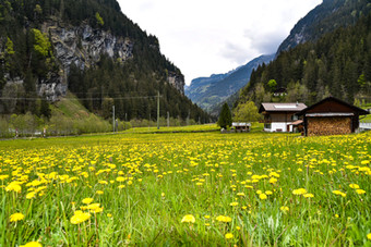 The Road to Lauterbrunnen