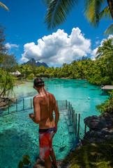 Feeding the Fish | St. Regis Bora Bora