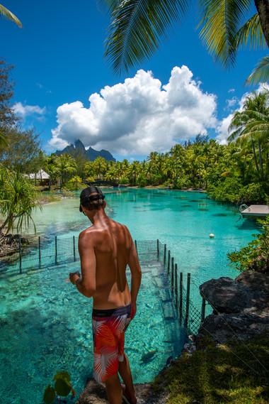 Feeding the Fish   St. Regis Bora Bora