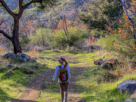 7 Amazing Hikes in Ventura County