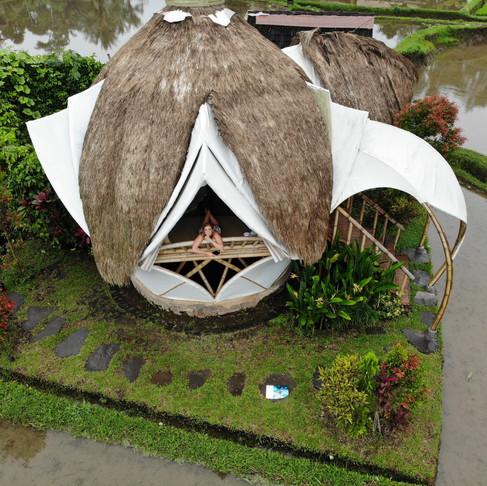 New Earth Haven, Bali