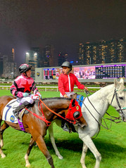 Bet on the Ponies at Happy Valley Racecourse