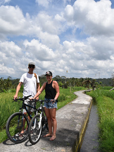 Bicycle ride through the rice fields