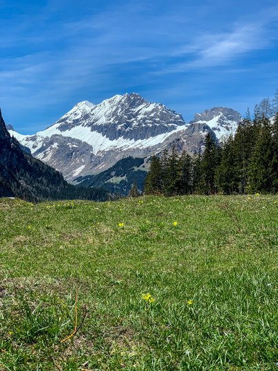 Views Looking Toward Kandersteg