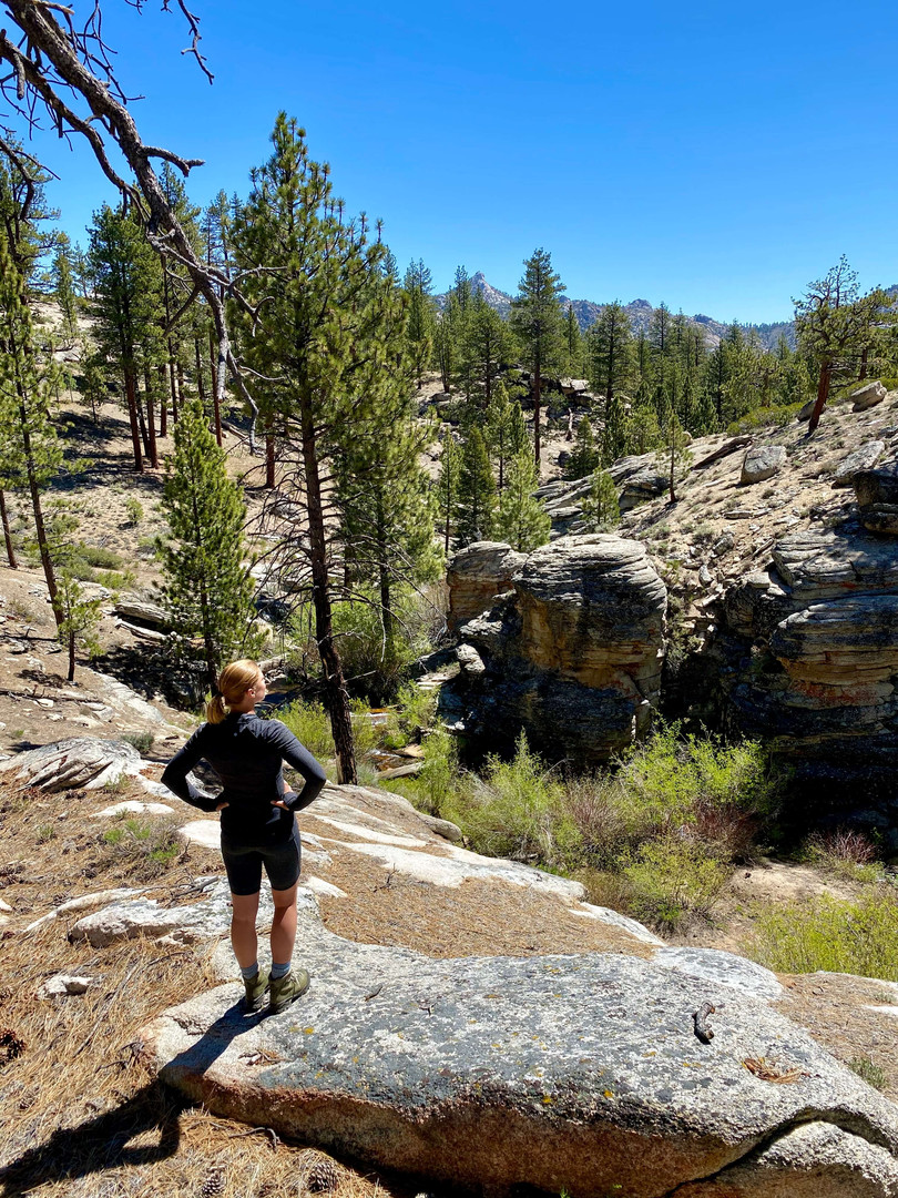 Hiking Domeland Wilderness