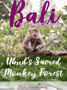 Destination Guide Bali Monkey Forest.png