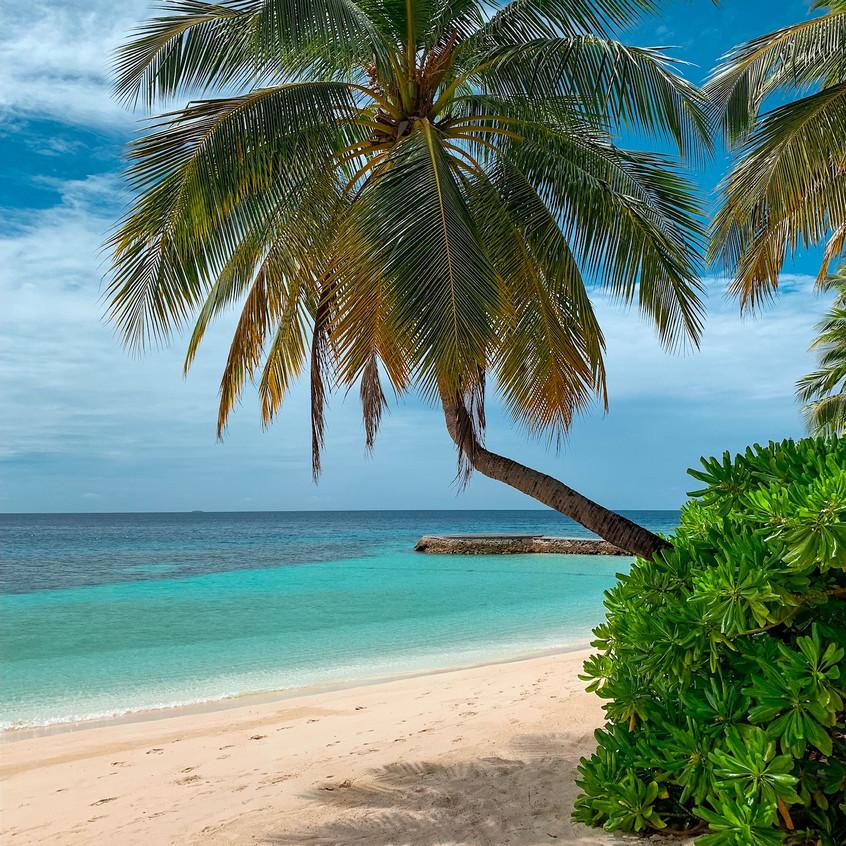 The beach at the W Maldives.