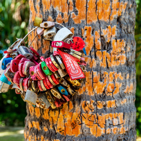 Locks of Love - InterContinental Thalass