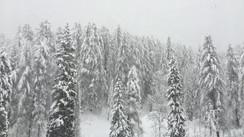 Snow in Cortina d'Ampezzo