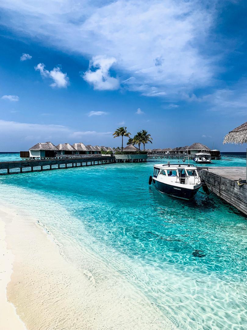 The W Maldives
