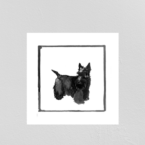 A Very Modern Dog Scottish Terrier