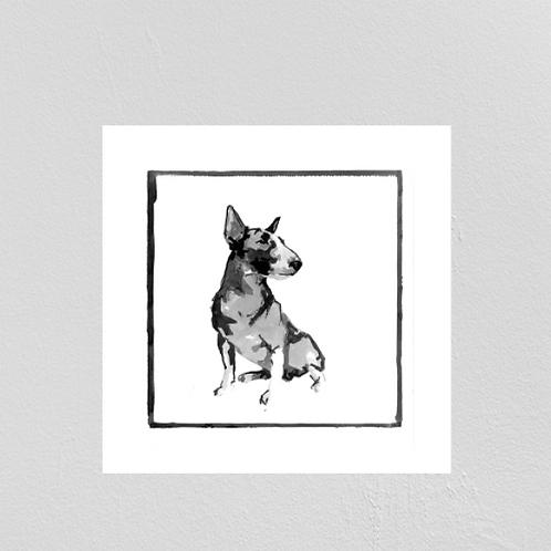A Very Modern Dog Bull Terrier