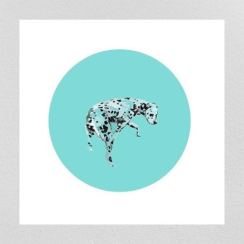 A Very Modern Dog Dalmatian 1