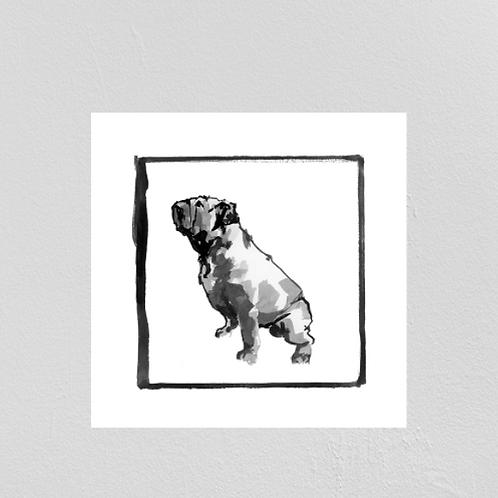 A Very Modern Dog English Bulldog