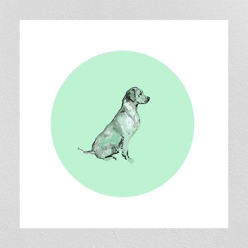 A Very Modern Dog Labrador