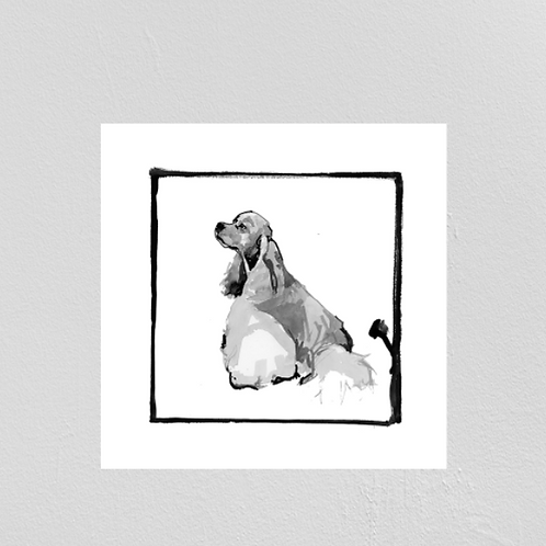 A Very Modern Dog Cocker Spaniel