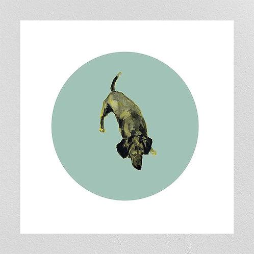 A Very Modern Dog Dachshund 2