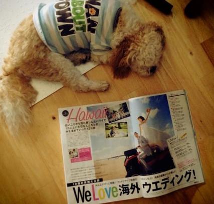 Ken & Moe Zexy Magazine Editorial