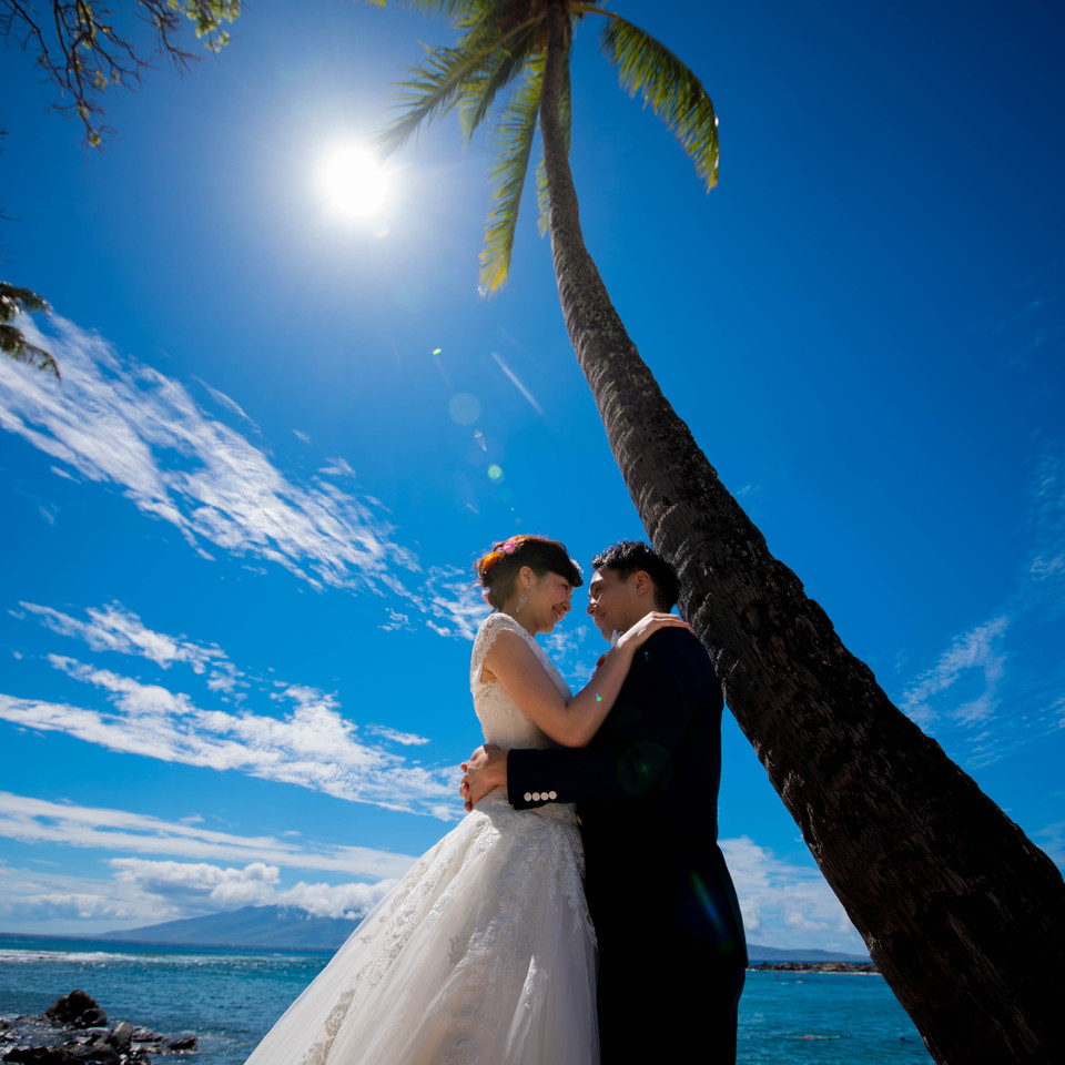 Coconut Tree and wedding couple having a moment