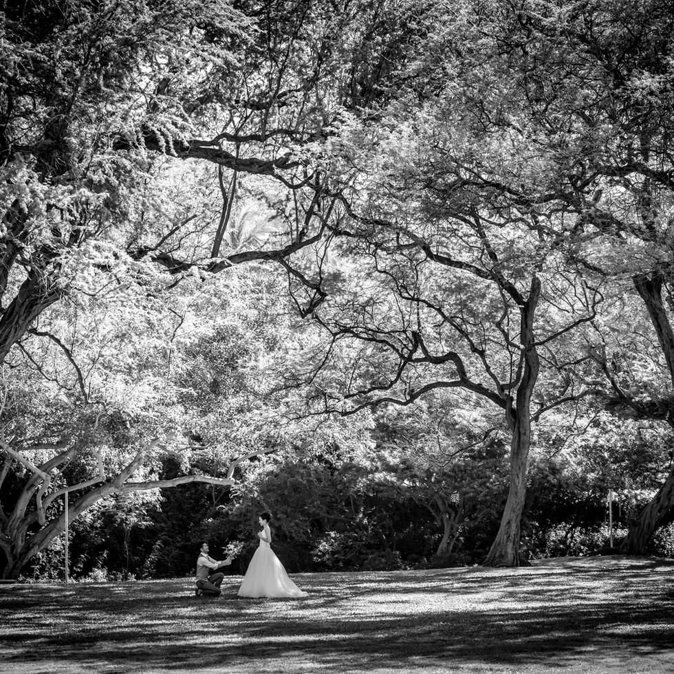 Bent Knee in the park