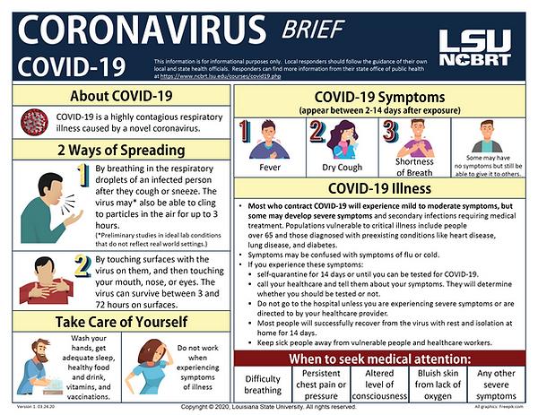 CORONA VIRUS BRIEF-01.png