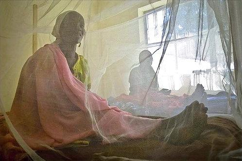 Mosquito Net Donation