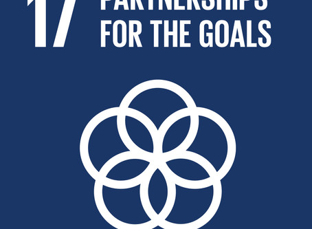 SDG of the Month - SDG 17 (March)