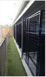 View of the outside dog Runs