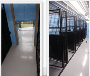 View of our indoor kennels