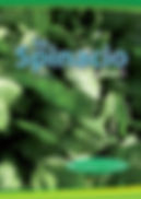 Catalogo Spinaci - La Semiorto Sementi