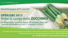 OPEN DAY 2017 - Zucchino