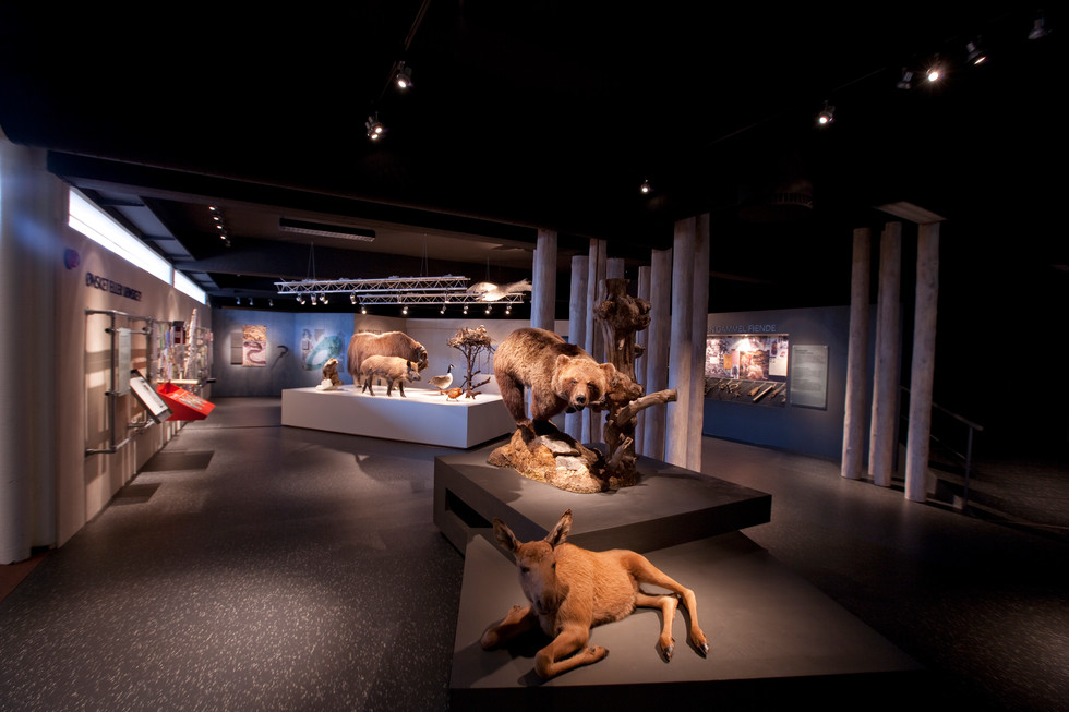 Norsk Skogmuseum