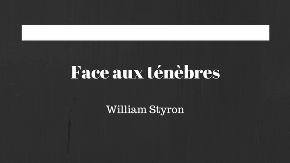 Face aux ténèbres - William Styron