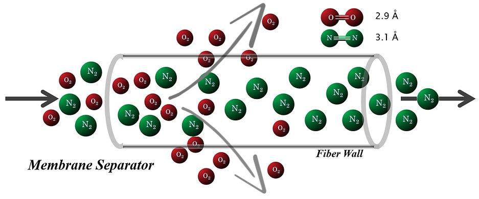 Membrane_Diagram.jpg
