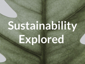 What is a sustainable business model?